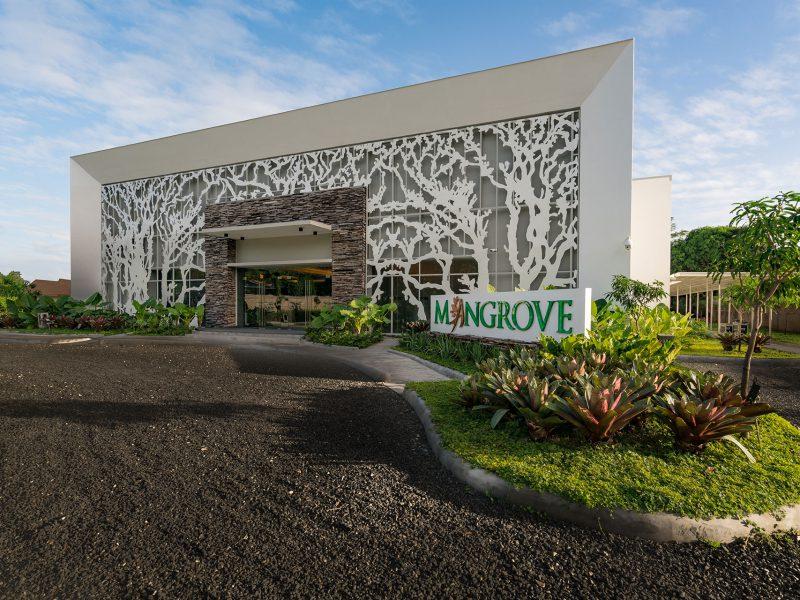 mangrove-img-gallery-3